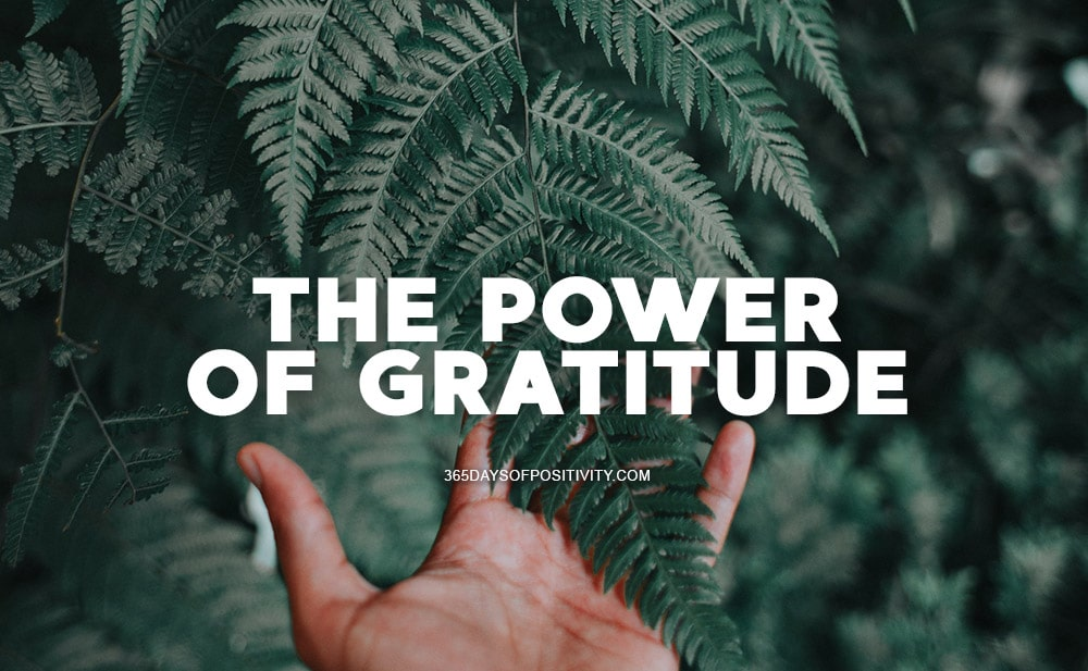 power of gratitude benefits